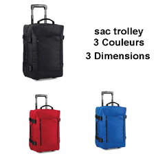 BG.461 - SAC TROLLEY CABINE AVION STARLIGHT