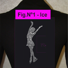 VESTE FIG. N°1 ICE STRASS